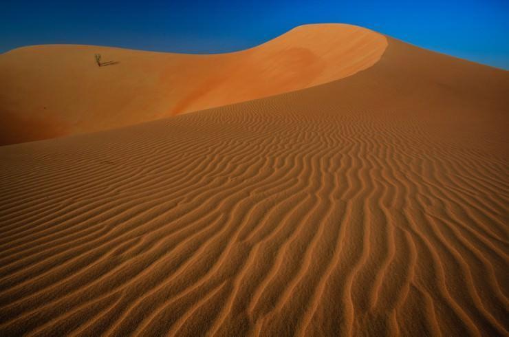 بخش خالی صحرا