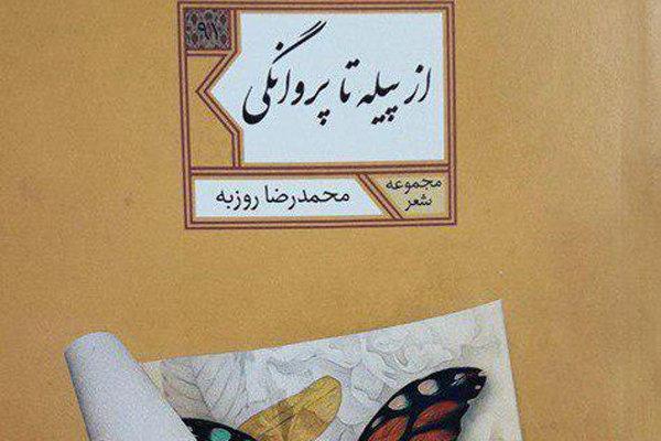 نقد از پیله تا پروانگی در خبرگزاری مهر